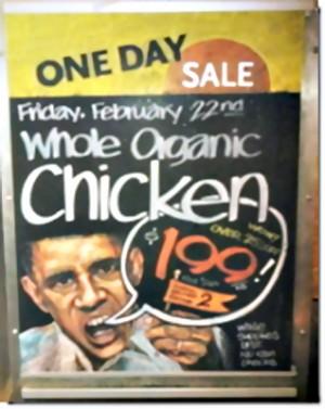 Racist-Obama-sign