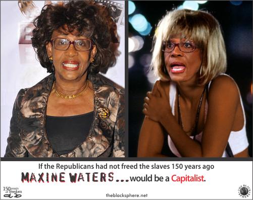 Republicanism - Maxine Waters capitalist