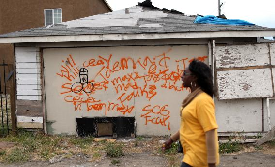 Selma blight 2