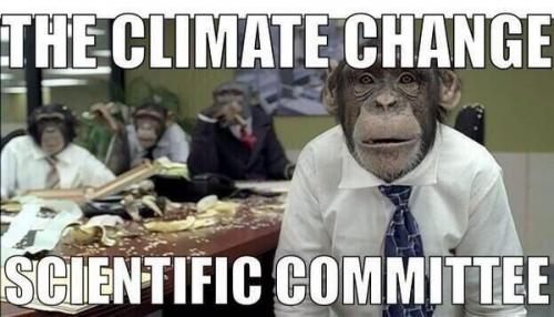 Monkeys climate change
