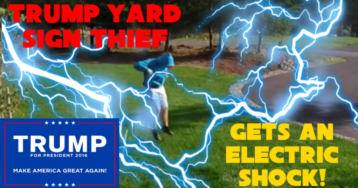 Trump yard sign thief