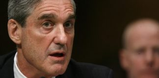 Mueller report; #TeamKJ; #KevinJackson