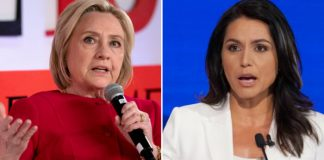 Gabbard, Clinton, Hillary, cat fight, #TeamKJ, #KevinJackson