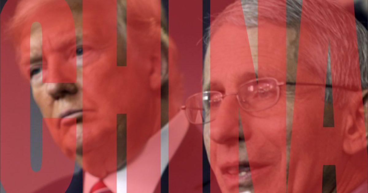 Trump, China, Fauci, Kevin Jackson