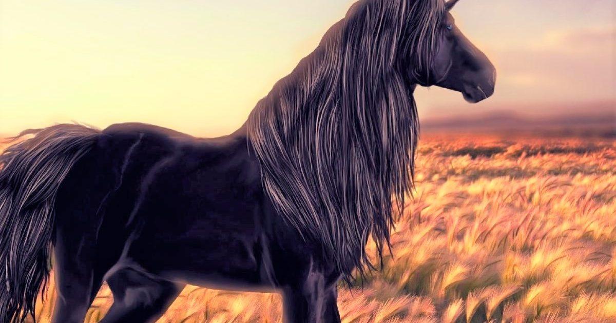 Unicorns, Blacks, Kevin Jackson, critical race theory